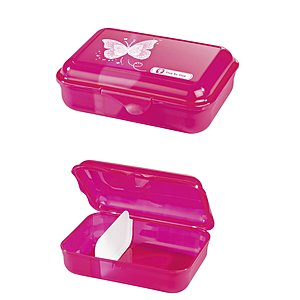 Step by Step Lunchbox Shiny Butterfly